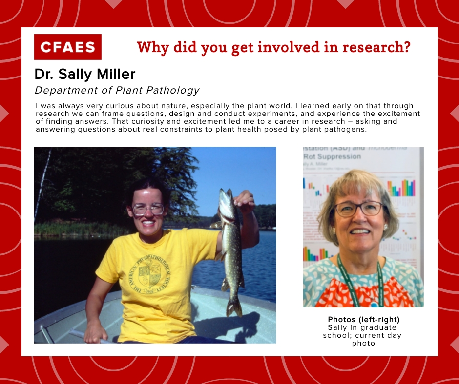Dr. Sally Miller, Why did you get involved in research graphic.