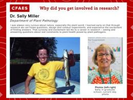 Dr. Sally Miller grad school photo and current professional photo, why I research graphic