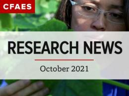 Dr. Chieri Kubota examining a plant under newsletter title, Research News - October 2021